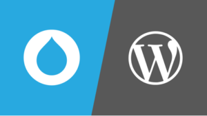 Drupal vs. WordPress Compared – Pros and Cons 2019