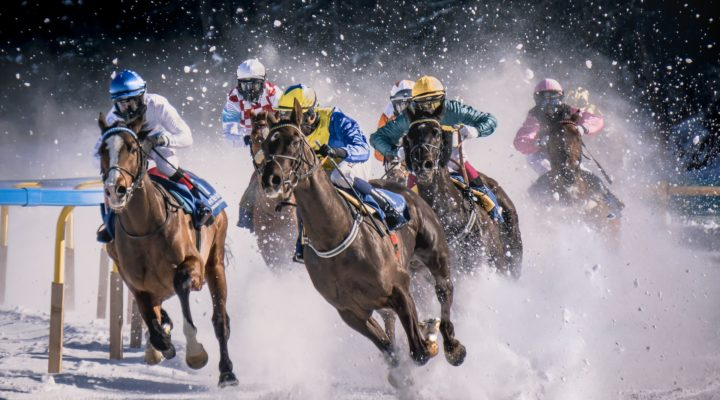 The Reality of Owning a Racehorse